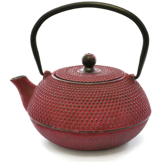 EETRITE 600ML CAST IRON TEAPOT